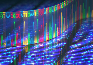 DNA gene sequence.
