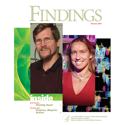 Findings Magazine Cover, February 2003.