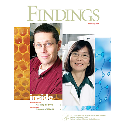 Findings Magazine Cover, February 2004.