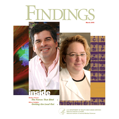 Findings Magazine Cover, March 2005.