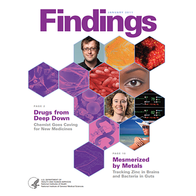 Findings Magazine Cover, January 2011.